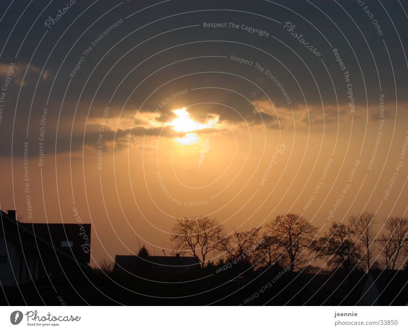 Nature Sun Clouds Evening sun
