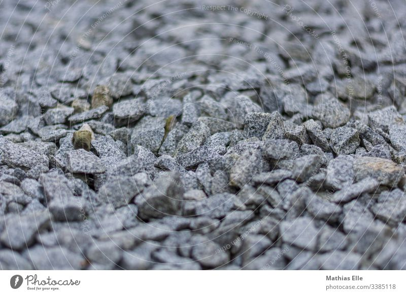 Grey gravel stones Colour photo Exterior shot Deserted Rock Pebble Gravel Stone Small Blank background Building material Consistency Beach Black & white photo