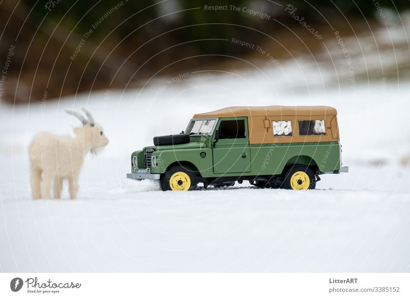 LAND ROVER SERIES IN FRESH SNOW MARVELLED AT BY GOAT goat mountain goat Virgin snow Snow Winter winter landscape country rover land rover series Vintage car