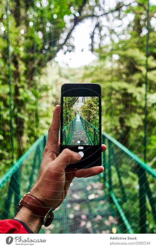 Crop tourist taking photo of bridge in jungle traveler take photo smartphone green modern summer nature costa rica device gadget mobile lifestyle journey
