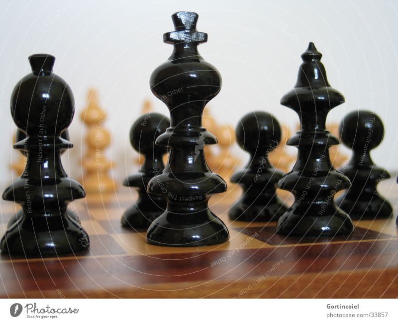 White Joy Black Playing Think Leisure and hobbies Success Planning Intellect Wooden board Sporting event Brain and nervous system Smart Chess Chessboard
