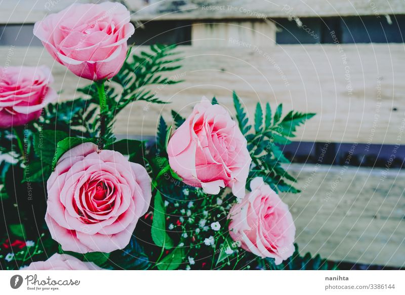 Beautiful bouquet of pink roses spring background wedding decoration fresh freshness coral gift valentine valentine's day floral in bloom blossoming beautiful