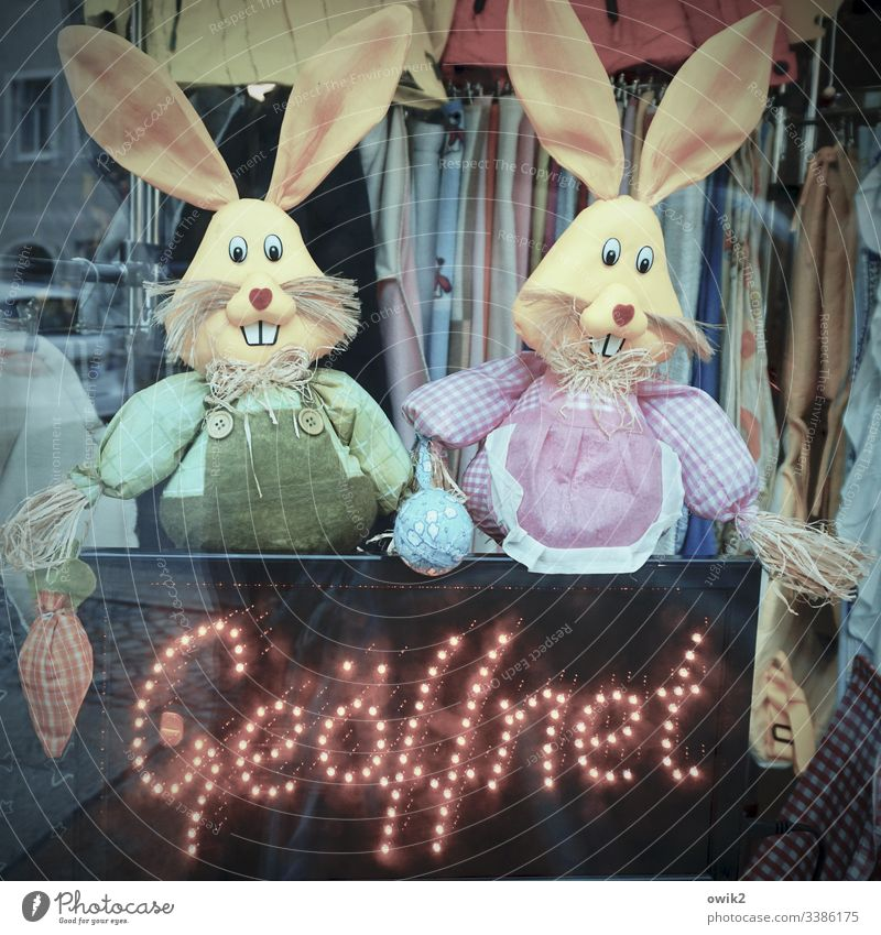 Customer Catchers hares Easter Easter bunnies Spring Multicoloured Deserted Interior shot Shop window purchase & sale second-hand goods Flea market Textiles