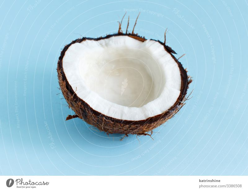 Coconut piece on a light blue background coconut keto fruit close up pastel ingredient nutrition vegan vegetarian veggie white brown sweet healthy keto diet
