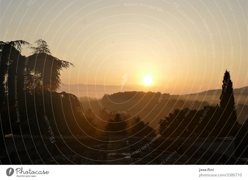 Sunrise in the Toscana Nature Landscape trees Roof mountains Horizon Sky Sunlight Orange Bright rays Exterior shot Deserted Yellow Morning clear Summer