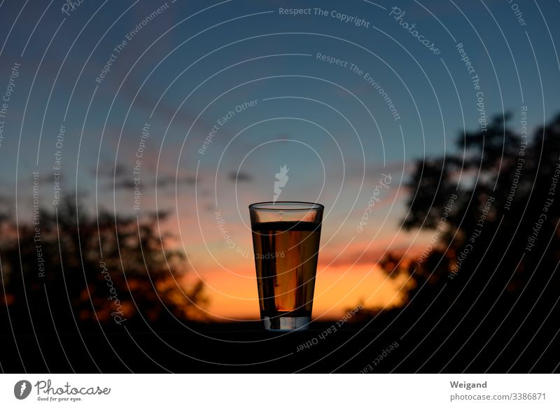 beer Beer Party Night life tranquillity Closing time drink Glass Sunset To enjoy Balcony