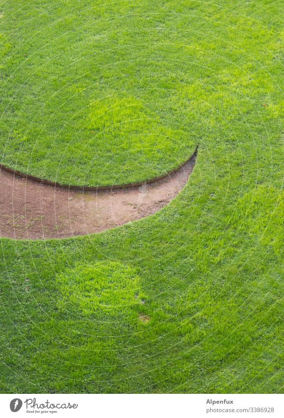 smiling grass Grass Green Meadow Lawn Nature Garden Exterior shot Colour photo Deserted Day Laughter Smiling Environment Summer Park Landscape