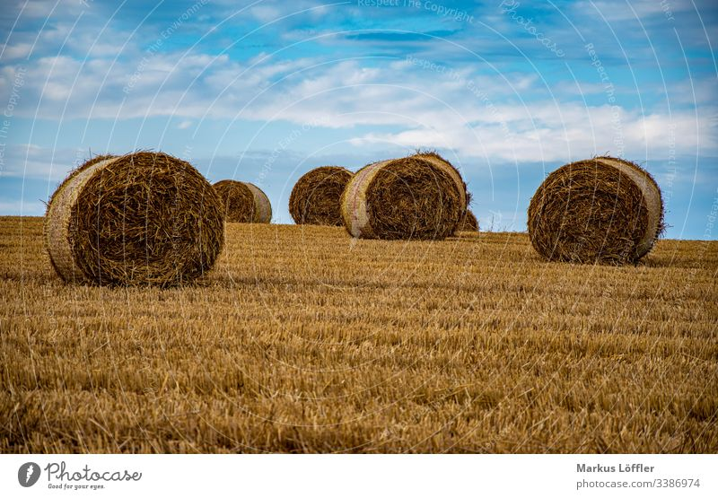 Straw rolls on the field Field Nature Landscape Sky harvest