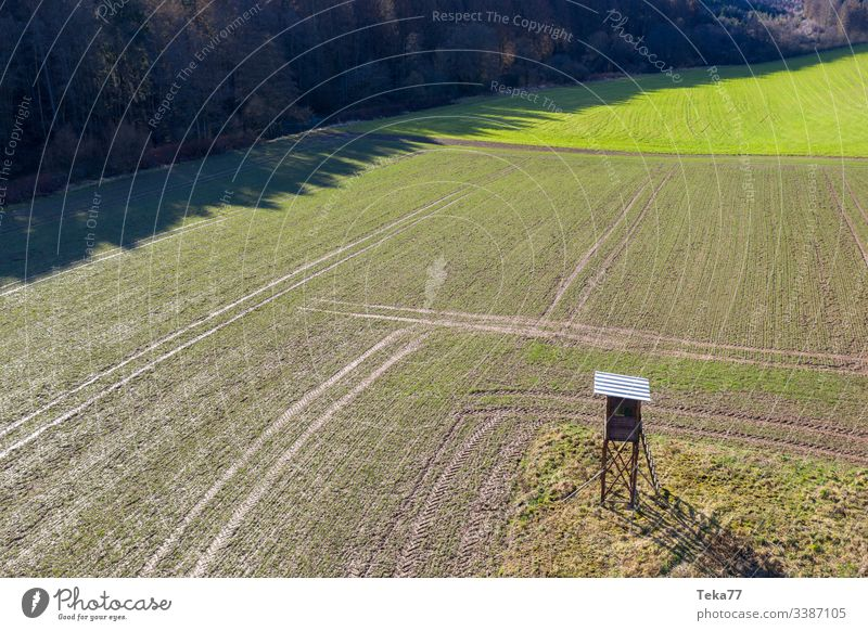 #The high seat from above Hunting Blind Above Nature Tall Agriculture Field