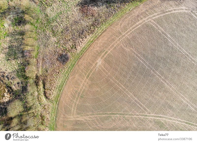 #Field tracks and forest edge Forest from on high drone acre Tracks Agriculture trees