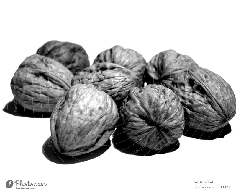 walnuts Food Nut Walnut Nutshell Nutrition Healthy Kitchen Thanksgiving Autumn Winter Delicious Christmas decoration Snack Black & white photo Isolated Image