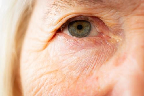 Portrait of a senior caucasian woman eyes themes of retirement senior aging process portrait 1 person adult age aged beautiful beauty caucasian ethnicity