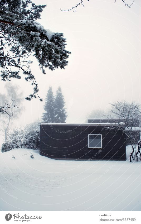 Dark hut in light snow Harz Winter Snow depression Loneliness House (Residential Structure) bungalow Window Square Black White trees bushes