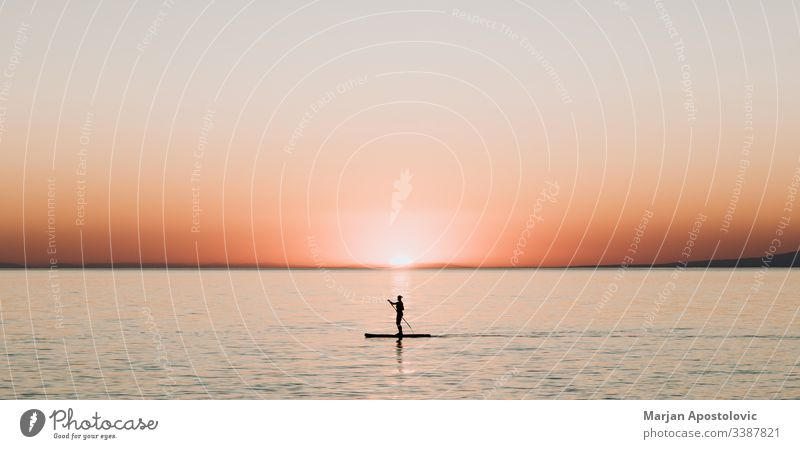 Woman paddling on a board on the sea in sunset activity background beautiful boarding enjoying evening female girl harmony healthy horizon landscape lifestyle