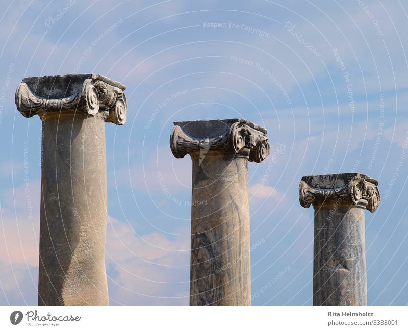 Columns with ionic capitals in Perge, Turkey Ruins columns Chapters Ionian capitals Day Holidays vacation travel Exterior shot Tourism Study trips Architecture