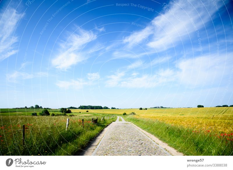"Path at the Vitter Chapel (Island of Rügen) Lanes & trails Field path"" Nature Landscape Sky Exterior shot Colour photo Clouds Deserted Day Beautiful weather"