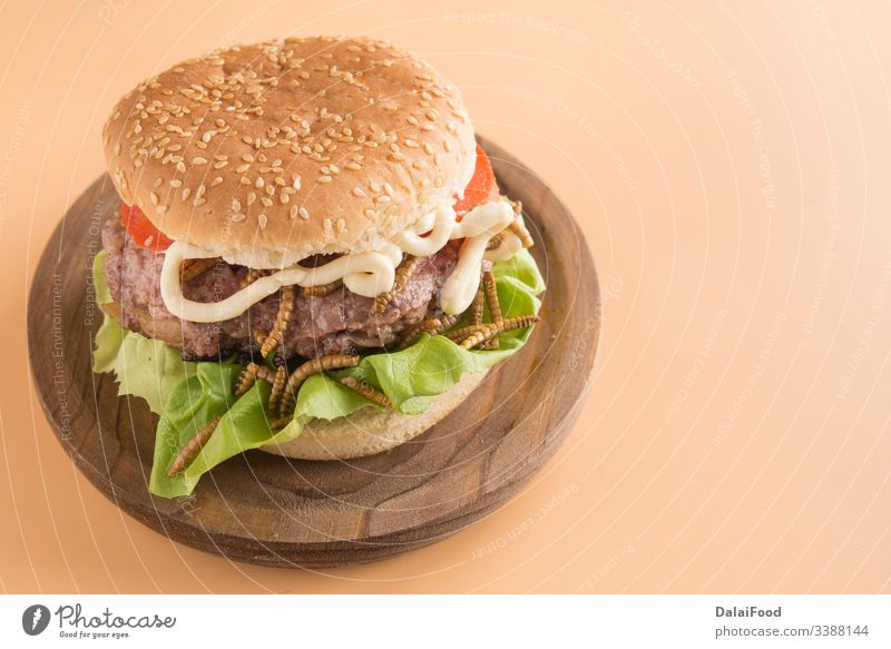 Burger of endible worms  with tomato and lettuce bread brown background burger edible fried insect larva meat protein tomatoes wooden plate