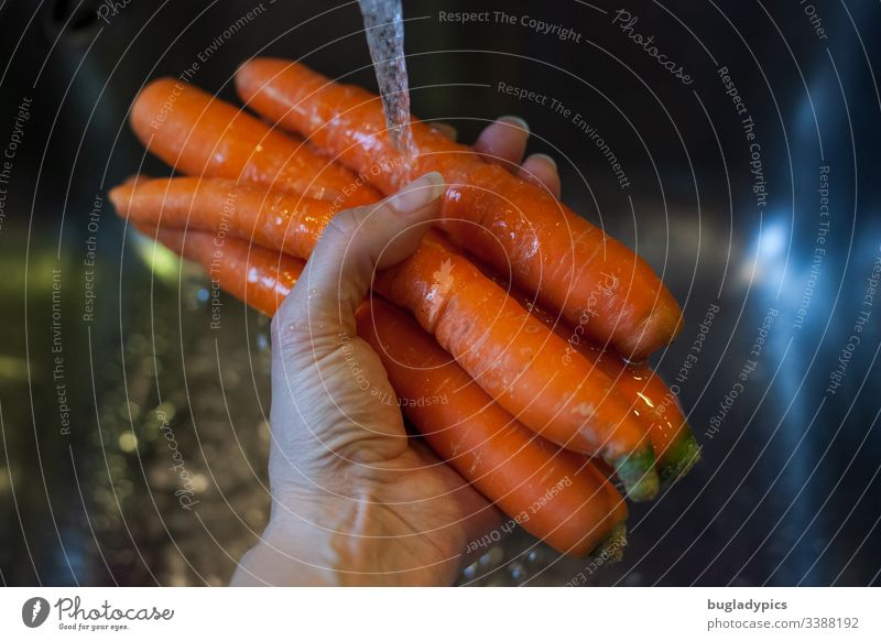 carrots held by hand under running water over a sink in the kitchen Kitchen Sink Wash Water Hand Cleaning Tap Organic produce boil Vegetable Orange food