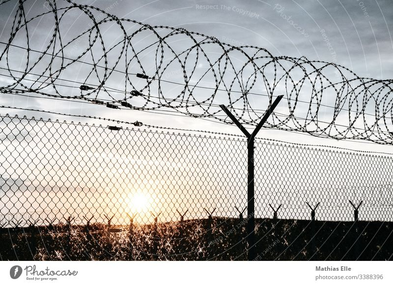 "Barbed wire fence at sunset Escape Refugee refugee aid refugee policy Grating Fence Barbed wire fence"" cordon Exterior shot Border Barrier Colour photo Threat"