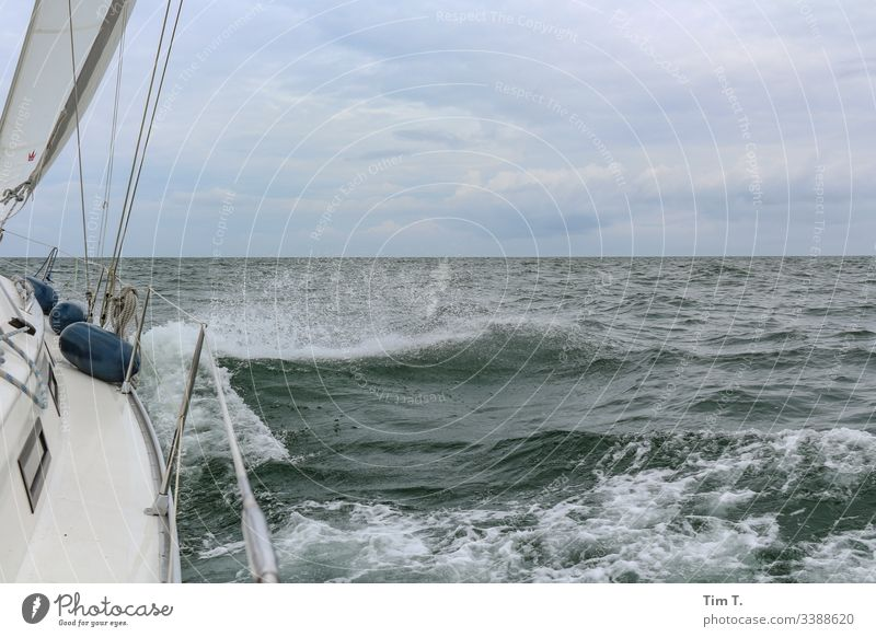 sail Sailing Baltic Sea Ocean Waves Wind Water Sailboat Exterior shot Colour photo Deserted Horizon Sailing ship Far-off places Navigation Boating trip