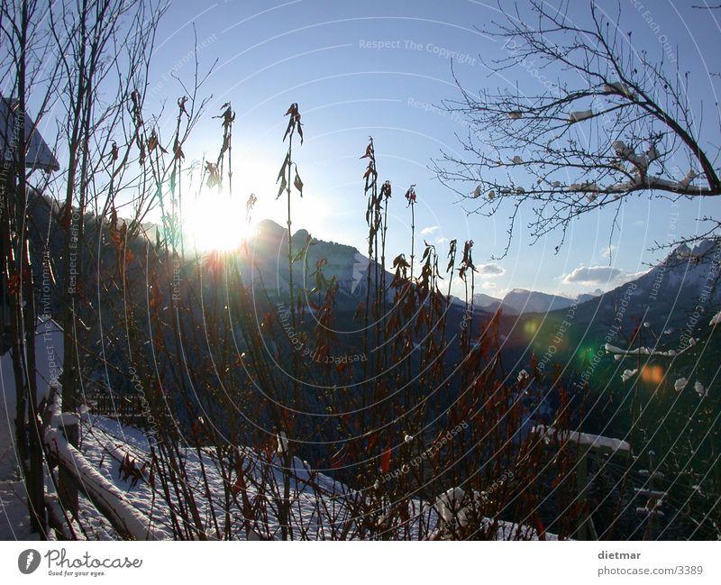 sunrise Winter Sun Snow