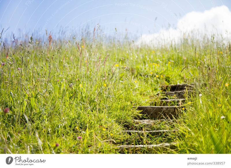 Sky Nature Green Summer Landscape Environment Grass Spring Natural Field Stairs