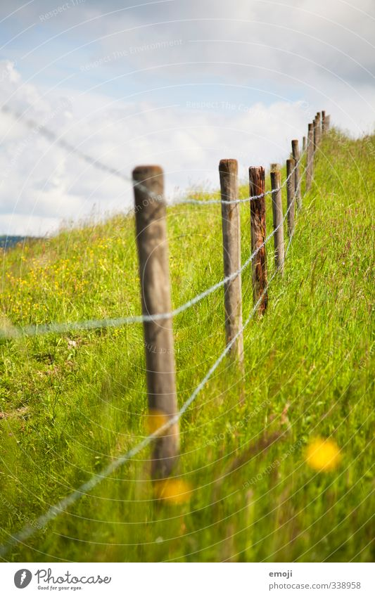 thunderstorms Environment Nature Summer Beautiful weather Foliage plant Meadow Natural Green Fence Fence post Colour photo Exterior shot Deserted Day