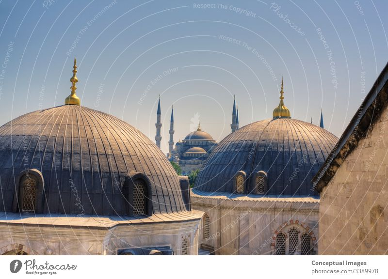 High view of the Blue Mosque, Istanbul, Turkey. Asia. ahmed ancient arabic architectural architecture asia blue blue mosque blue mosque istanbul city cityscape