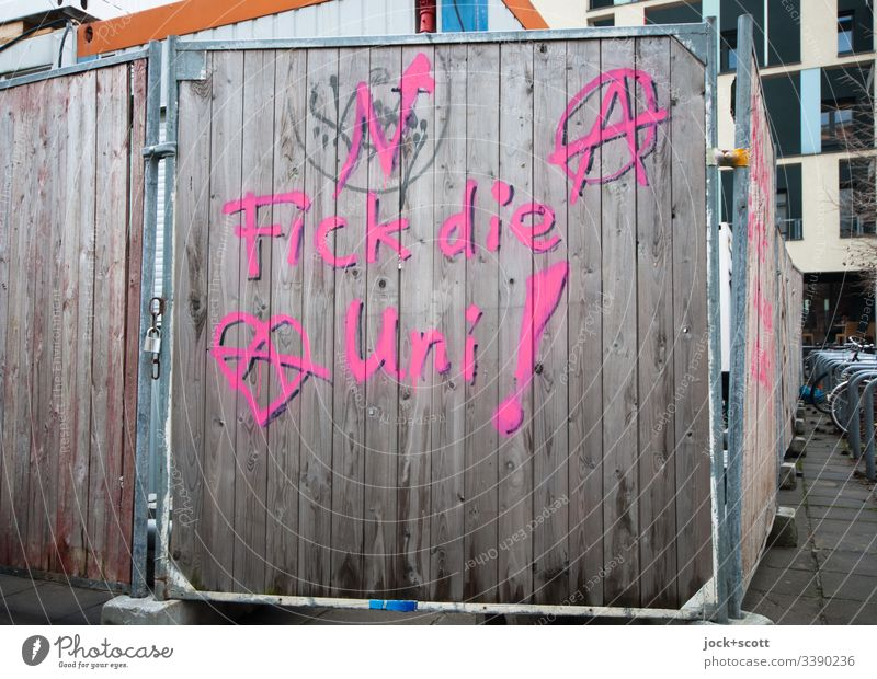 F*** the university Hoarding street art protest words Sign Barrier Protection Sprayed Subculture Street art Protest Society Graffiti Youth culture Slogan Word