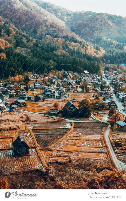pueblo japones con casas en otoño hometown house rural traditional Japan Autumn Rural town Shirakawa-go asian Landscape background Wallpaper forest Mountain