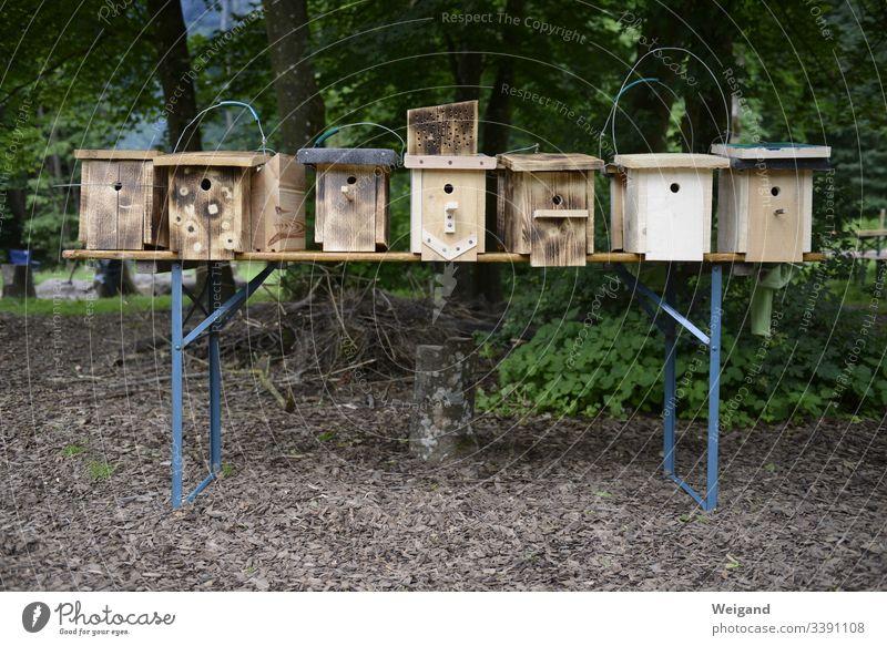 nesting box Nesting box bird protection nature conservation Build Wood do carpentry