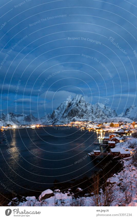 Pure on the Lofoten Islands Blue vacation famous Tourist Attraction Small Town Water Night Evening blue hour Wide angle Idyll Light Fishing village
