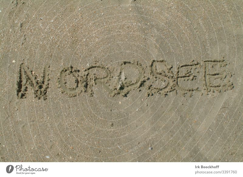 The word North Sea written in the sand North Sea coast North Sea beach Sand Beach more human Coast Exterior shot Relaxation Vacation & Travel Ocean Nature