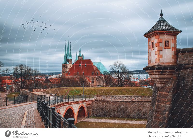 View from the citadel Petersberg to the Erfurt cathedral Dome Thuringia Manmade structures Architecture Tourist Attraction Church Town Europe Tower