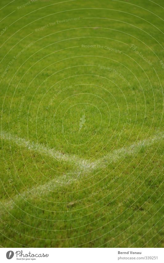 penalty area Playing Soccer Football pitch Sporting grounds Grass surface Looking Fresh Green White Calm Sports Connection Colour photo Exterior shot
