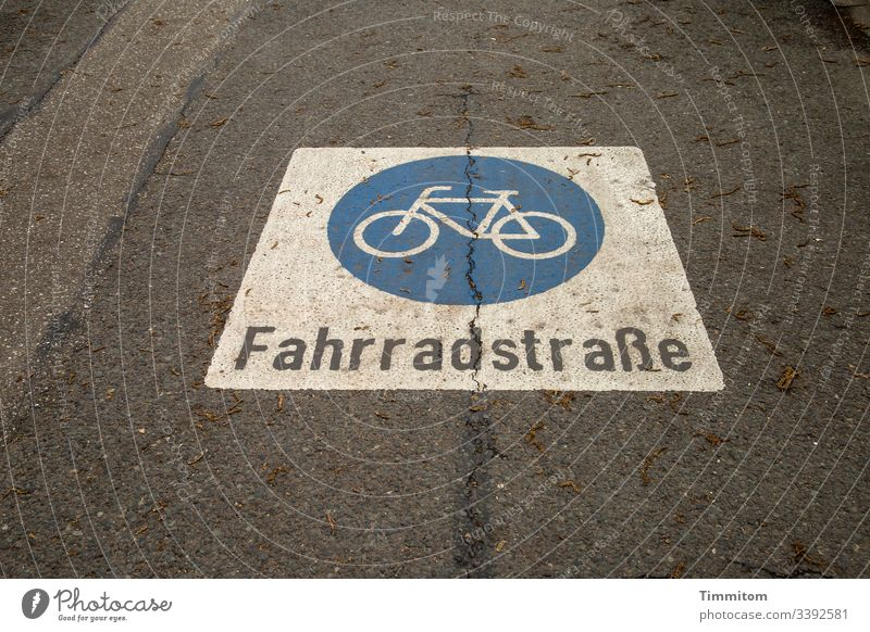 bicycle road Bicycle Cycling Transport Town mark Pictogram Asphalt Colour Traffic infrastructure Letters (alphabet) Lettering Street