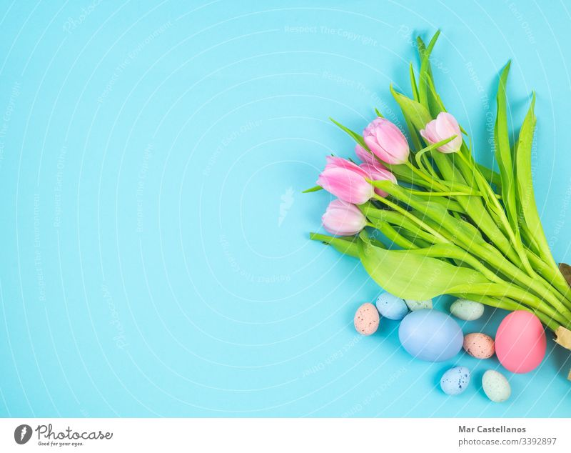 Bouquet of tulips and Easter eggs on a blue background Copy space. bouquet flowers copy left easter eggs top view woman women's day mother's day valentine's day