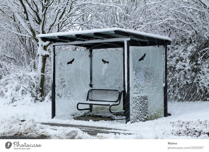 Bus stop on a winter snowy day bus cold transport weather sign frost transportation frozen outdoor road season street travel background nature nobody city
