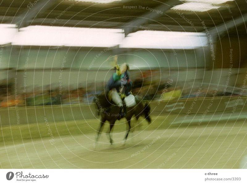 -> volti Vault Horse Sports Movement
