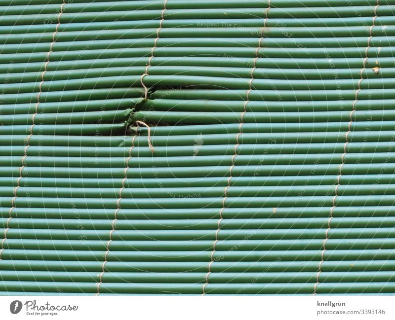 Green privacy screen with patched area Screening mended Structures and shapes Protection Deserted Colour photo Pattern Exterior shot Line Stripe Closed Day