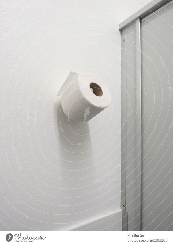 Spare roll of toilet paper hanging on the wall in a public toilet Toilet paper Replacement roll Public restroom Wall (building) Deserted Colour photo White Day