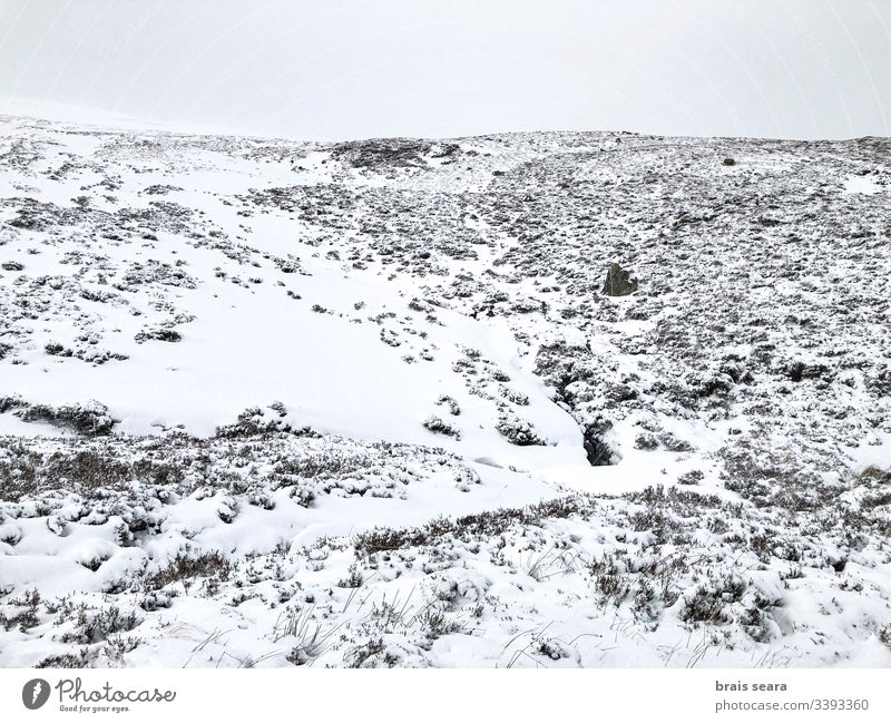 Scottish snowy mountain landscape. Cairngorms National Park, Scotland.. nature winter scotland winter view white cold weather wild snowflakes climate change