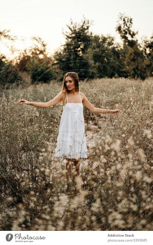 Tender lady standing in blooming field woman nature blossom white dress harmony gentle female summer tender young flower freedom carefree serene weekend idyllic
