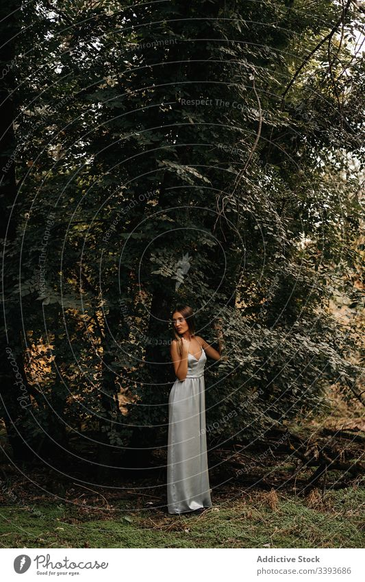 Stylish woman leaning on trunk of tree in forest trendy dream style woods sensual lean on posture summer casual nature stand young female countryside relax