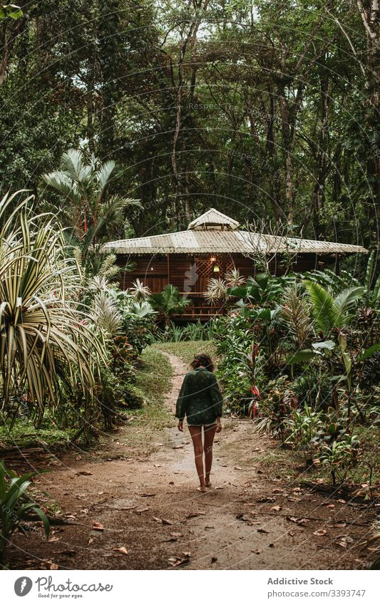Anonymous female tourist in green rainforest woman tropical vacation travel bungalow jungle exotic plant tourism nature tree palm path countryside lifestyle