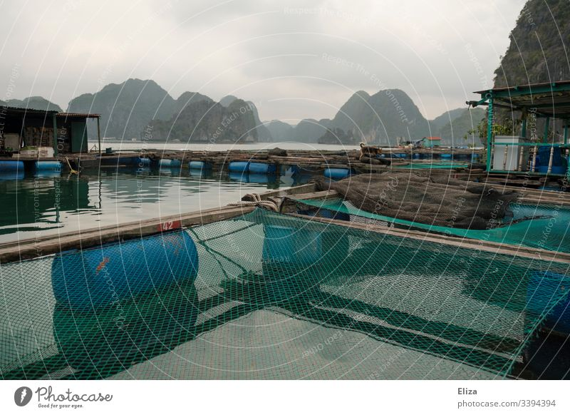 Floating fishing village on the water with fish farm and nets in Halong Bay in Vietnam Fishing village floating village Fisherman Fishing net Asia Fishery Ocean