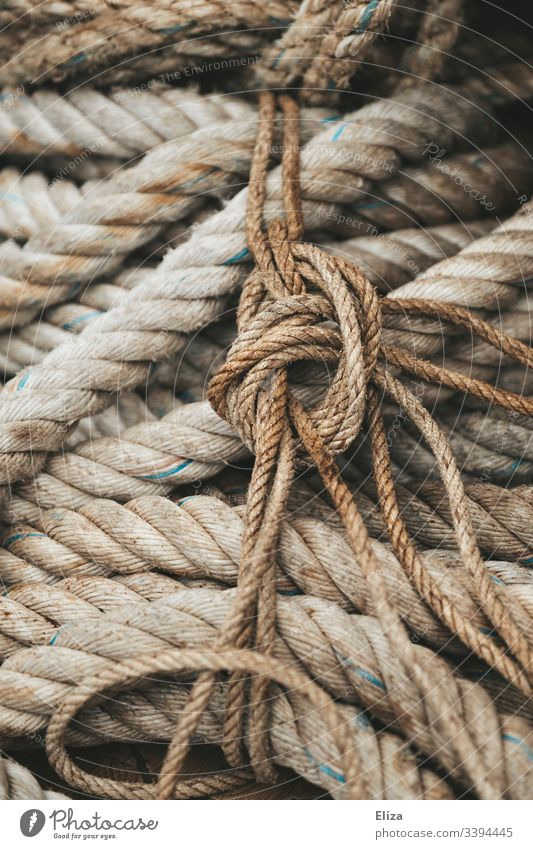 Close-up of thick, rough ropes and cables in beige and one knot seafaring Rope Dew Knot Old Detail Colour photo Sailing ship knotted Subdued colour Deserted