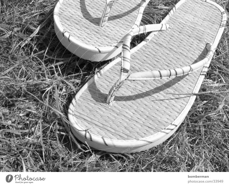 flip-flops Flip-flops Sandal Footwear Grass Photographic technology