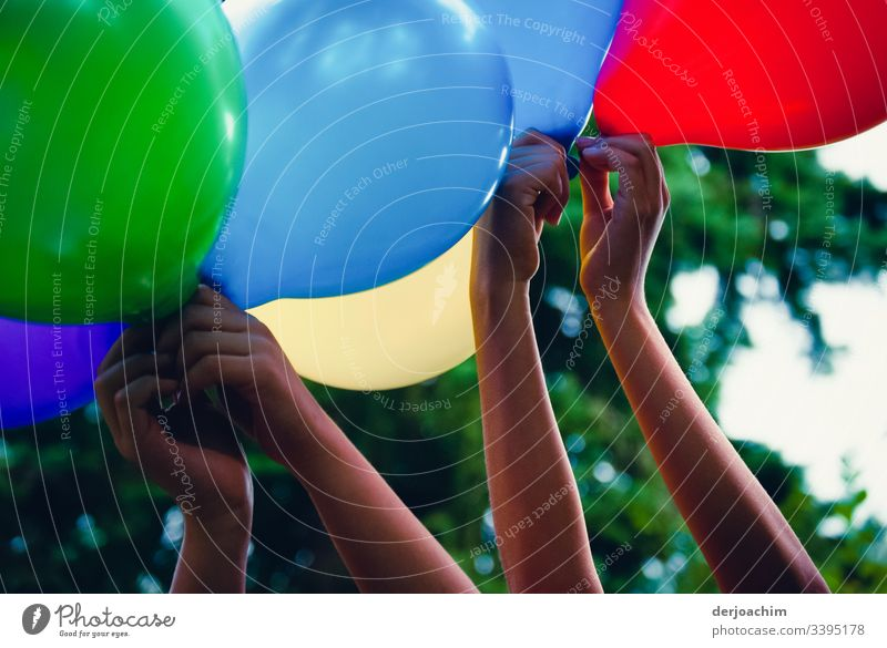 Children's hands hold colourful balloons in the air. Red, blue, green and yellow. A tree in the background. Fingers Children's game Colour photo symbolic power