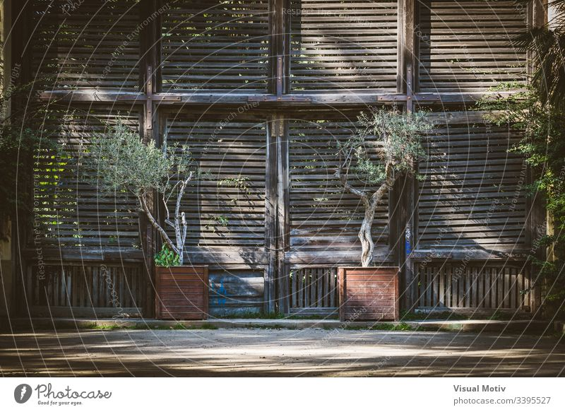 Old wooden shutter doors of a Lath House color architecture built structure plant no people nobody exterior building day natural light entrance closed